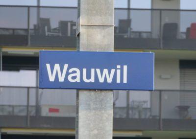 Wauwilermoos2019 0008